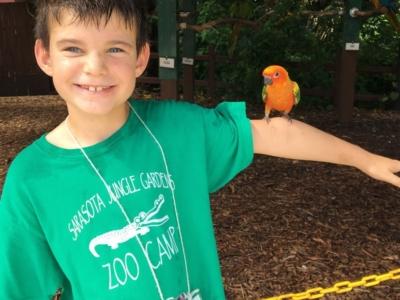 zoo-camp-kids-bird
